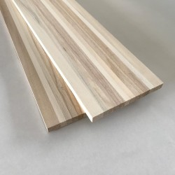 Anima legno sci media